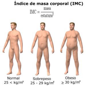 Gráfico de los diferentes estadios de IMC